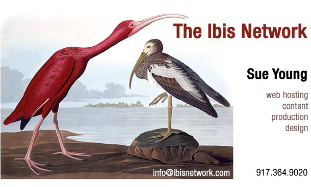 The Ibis Network